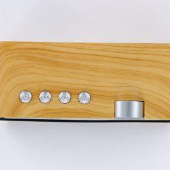 Amrit Bani Bluetooth Speaker